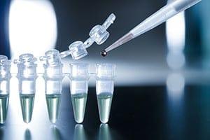 高品質のヒト幹細胞培養液がお手頃価格で